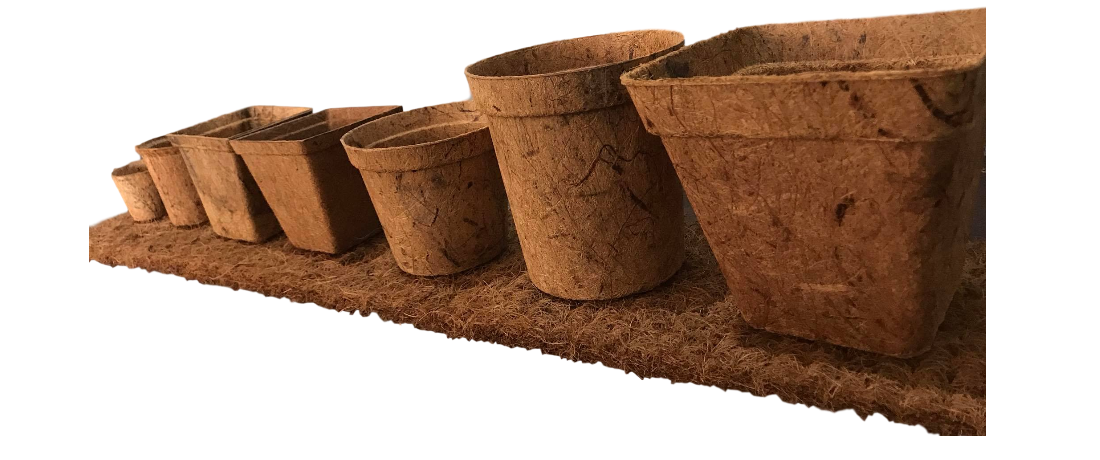 How to make Biodegradable Pots. Better Buy finished ones