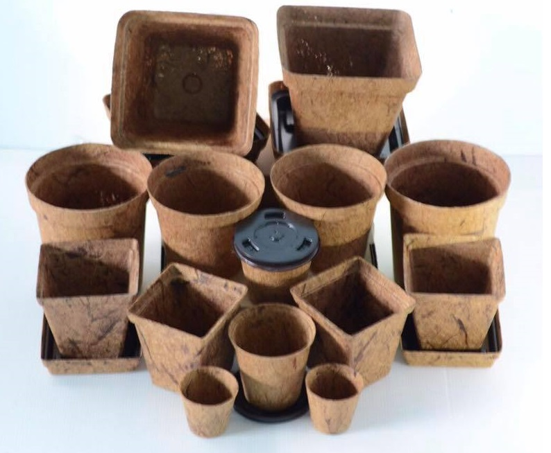 Biodegradable Pots in various sizes and shapes