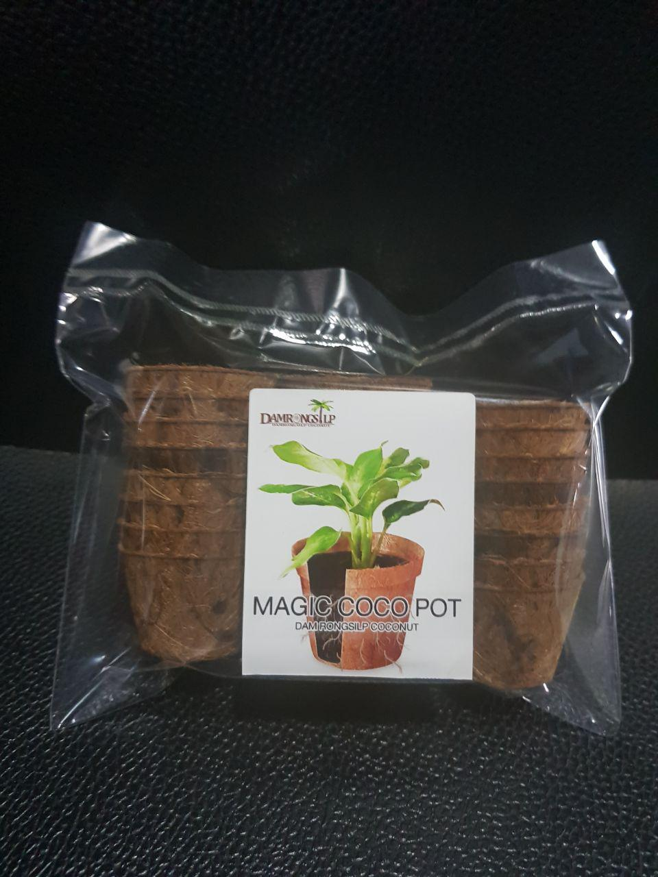 Mini Biodegradable Pots