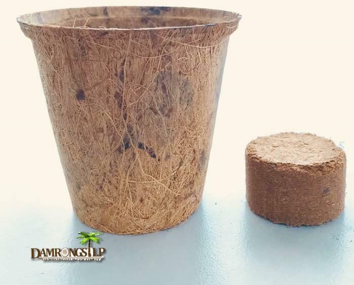 Biodegradable transplant pots