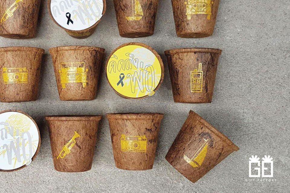 Biodegradable Coir Pots White labeling