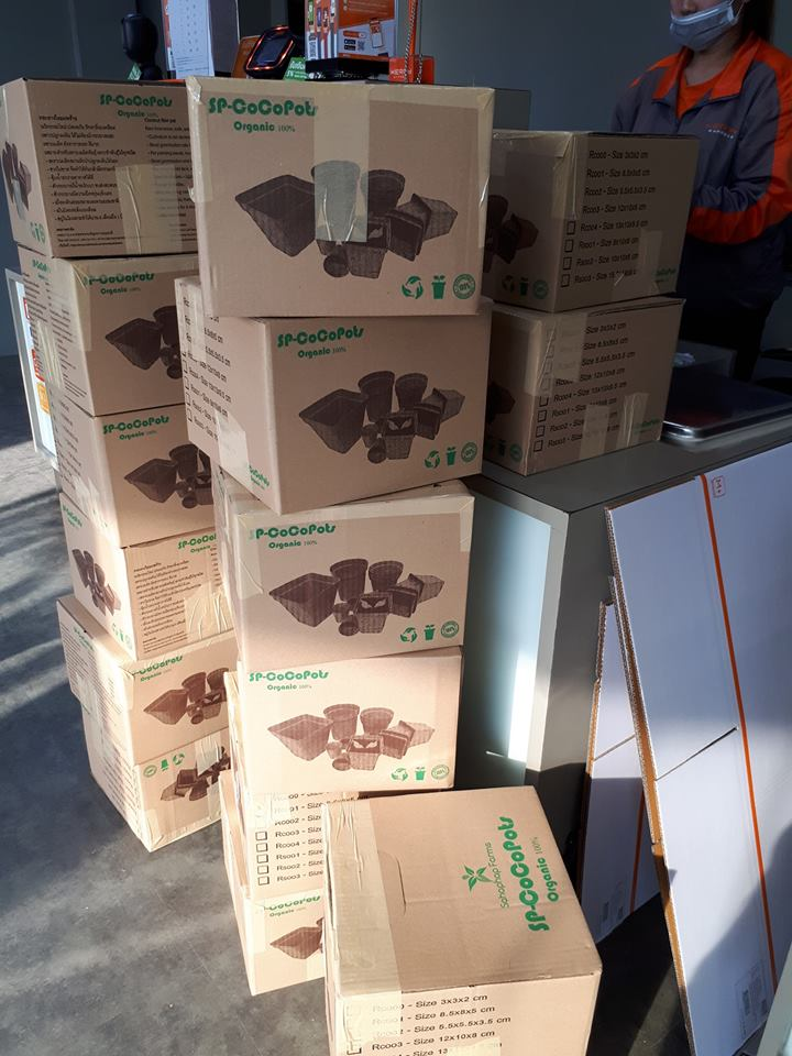 Coir Pots Wholesale