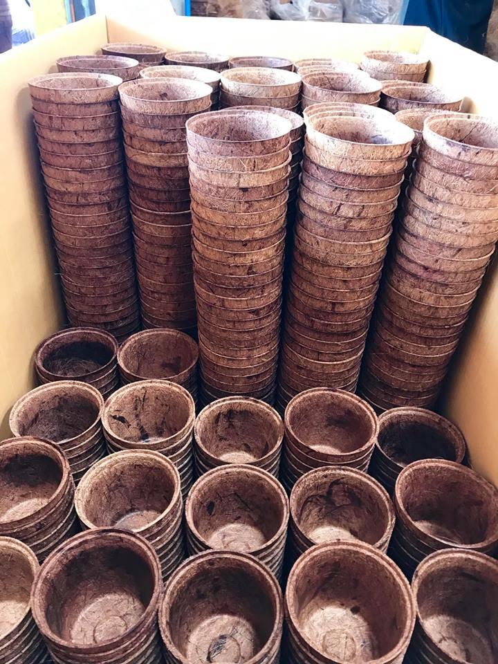 Coir Pots Wholesale & Bulk – Organic Flower Pots