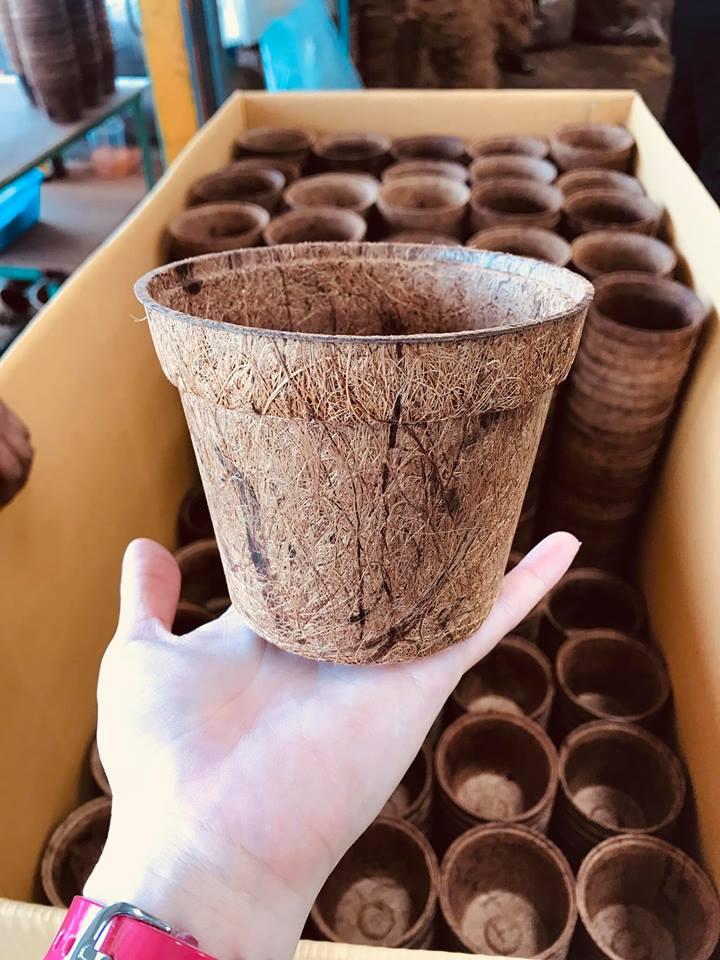 Coir Pots Wholesale & Bulk - Organic Flower Pots