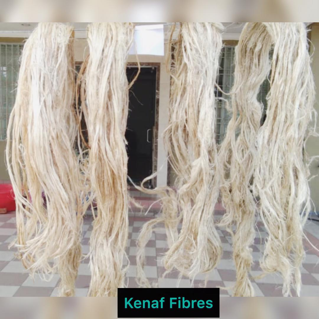 Kenaf fiber for sale