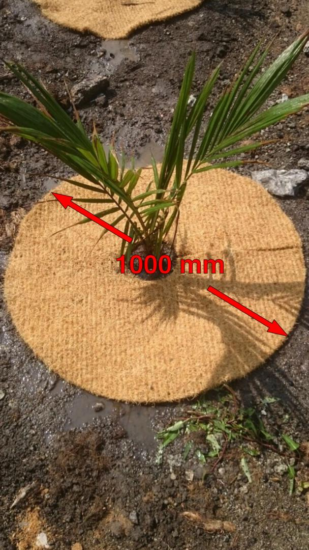 Coir mat made to measure