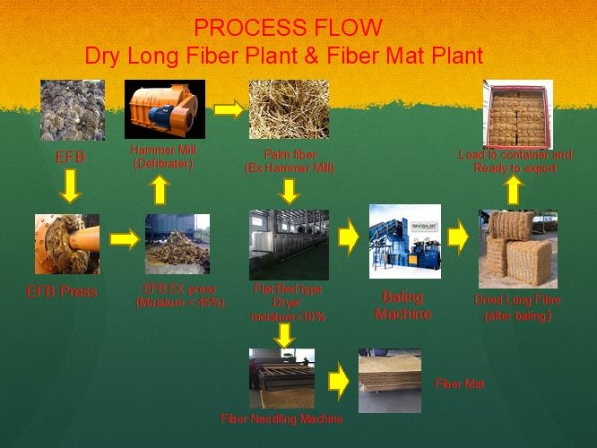 Palm fiber process