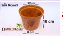 Most Popular Biodegradable Pot