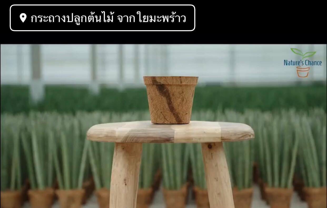 Coir Pots Trade Fair Award