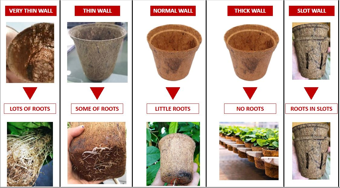 3 types of biodegradable Pots