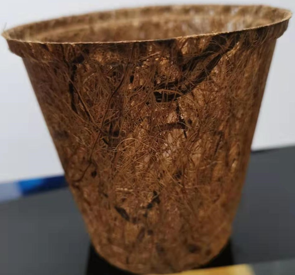 Hydroponics net pot