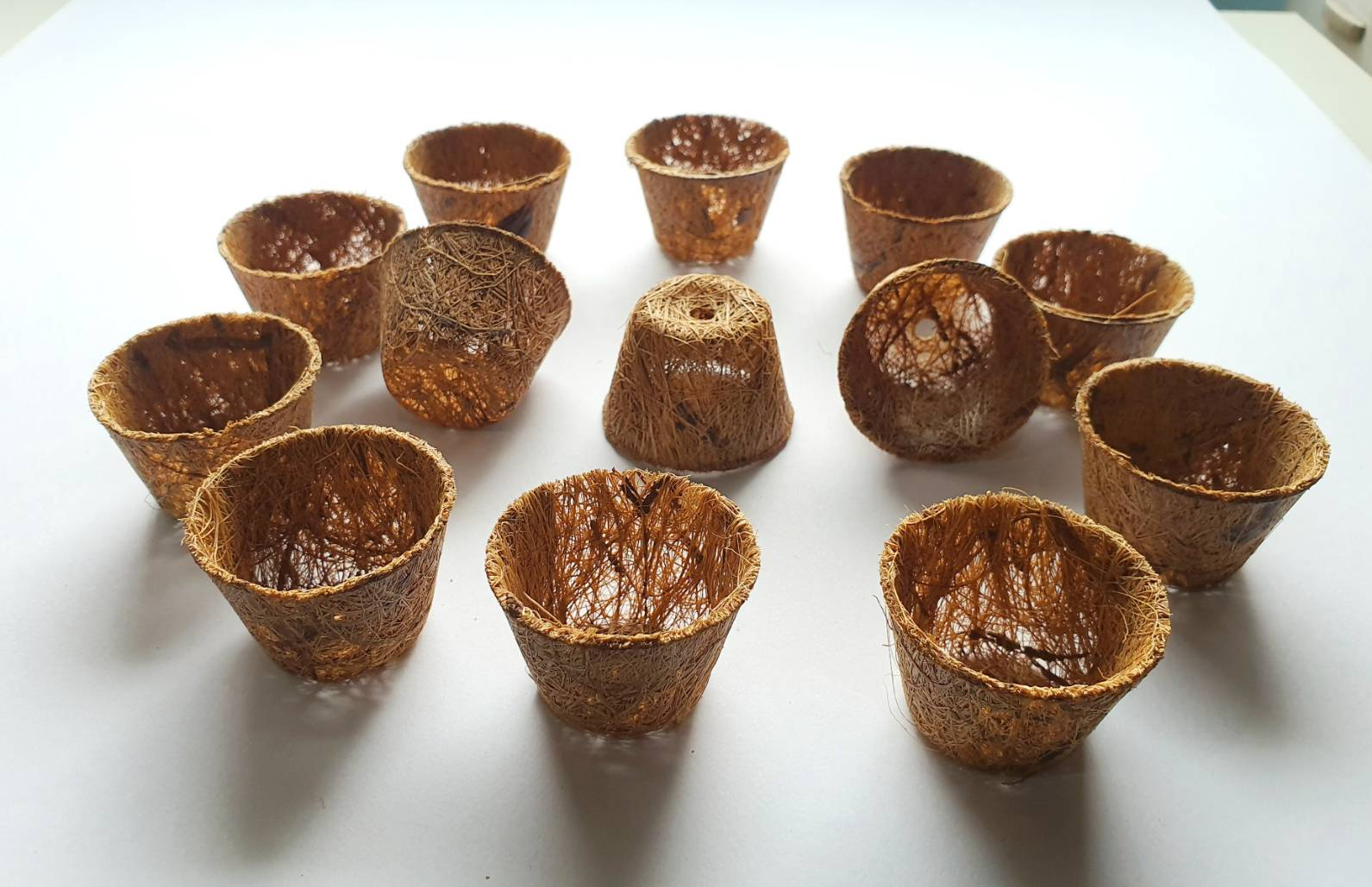 Hydroponics net pots (Natural & Biodegradable)