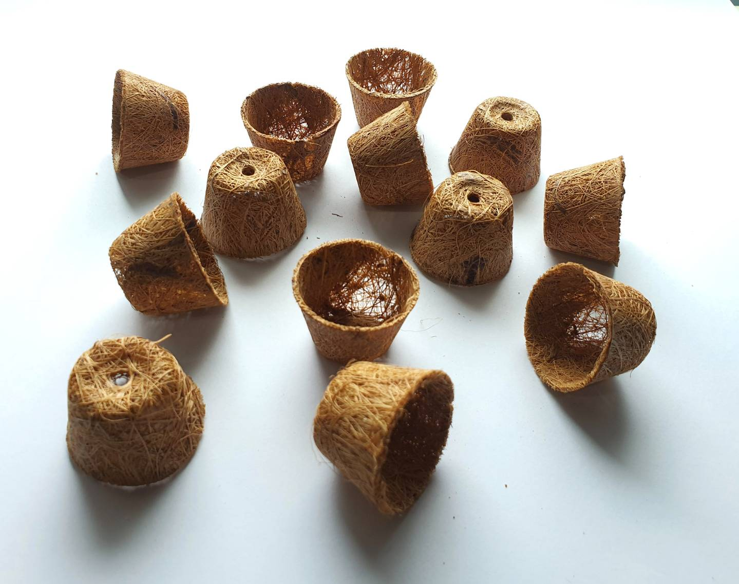 Biodegradable seed pots