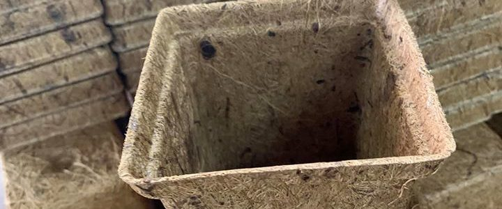 Coir Pots, coco pots wholesale and bulk deliveries